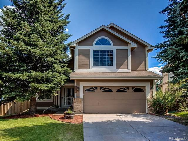 17108 Campion Way, Parker, CO 80134 (#4768829) :: The DeGrood Team
