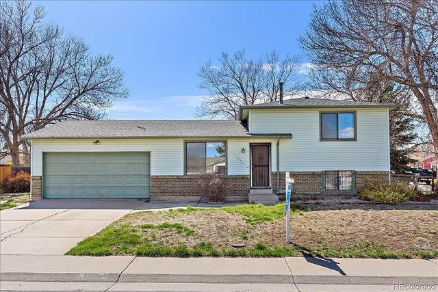 11771 Jackson Street, Thornton, CO 80233 (#4769659) :: The DeGrood Team