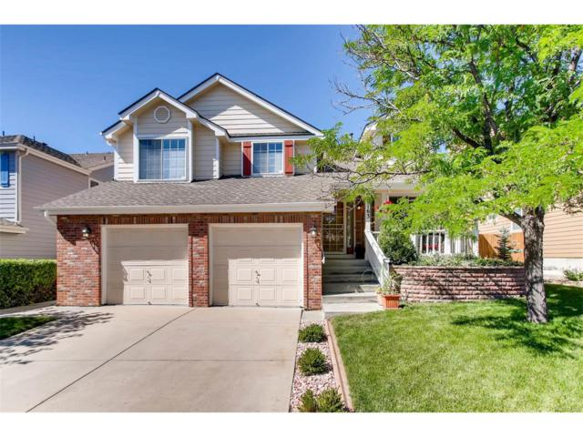 2163 S Eldridge Street, Lakewood, CO 80228 (MLS #4769829) :: 8z Real Estate