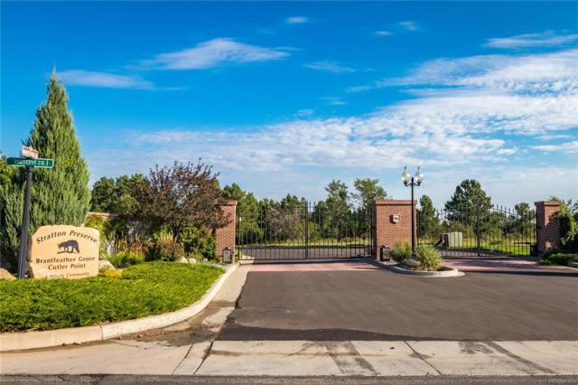 1720 Brantfeather Grove, Colorado Springs, CO 80906 (#4771430) :: Wisdom Real Estate