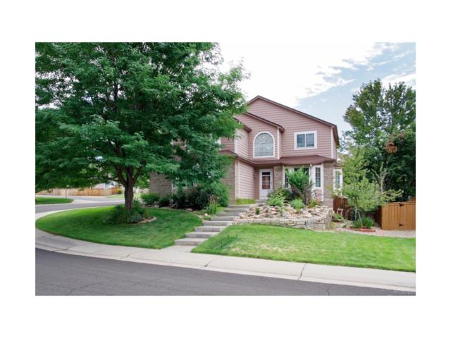 10101 Silver Maple Circle, Highlands Ranch, CO 80129 (#4773195) :: RE/MAX Professionals
