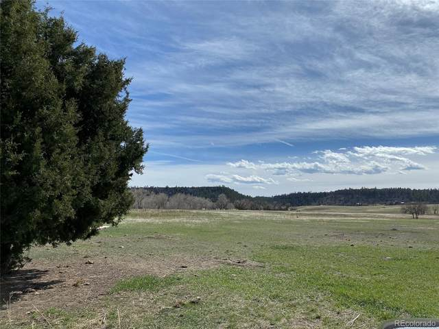 Castlewood Canyon Road, Franktown, CO 80116 (#4774489) :: The Healey Group