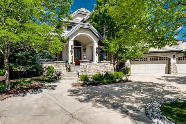 9141 E Star Hill Point, Lone Tree, CO 80124 (#4776537) :: The Heyl Group at Keller Williams