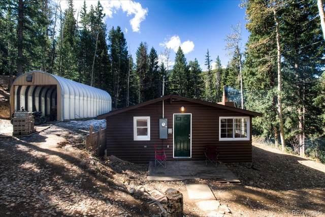 647 Old Little Bear Creek Road, Idaho Springs, CO 80452 (#4776926) :: The DeGrood Team