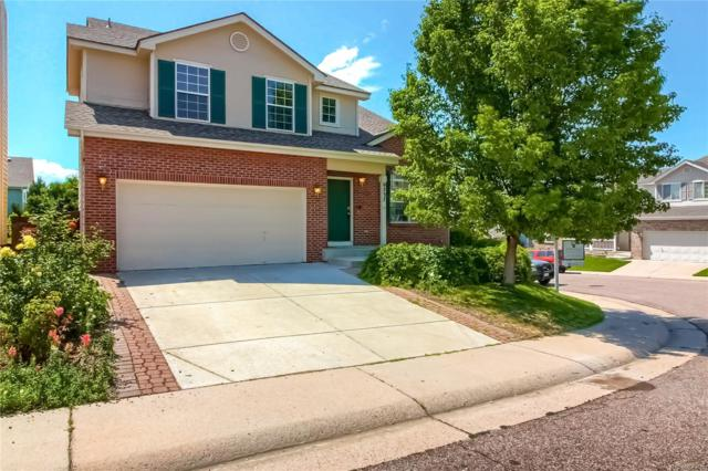 9737 Bucknell Court, Highlands Ranch, CO 80129 (#4777032) :: The HomeSmiths Team - Keller Williams
