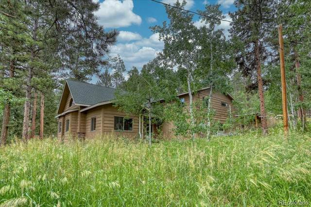 26196 Rea Avenue, Conifer, CO 80433 (#4777251) :: Berkshire Hathaway HomeServices Innovative Real Estate