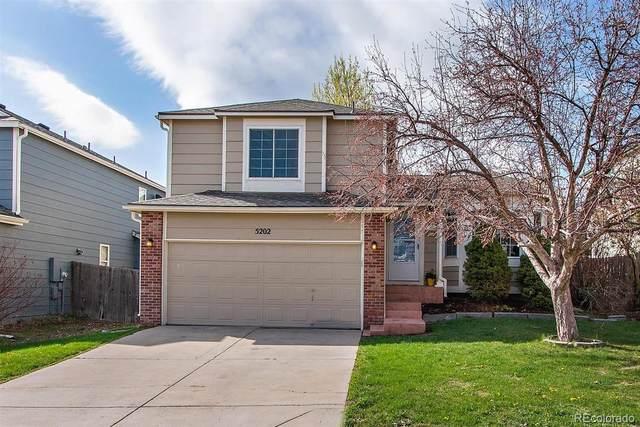 5202 Devon Avenue, Castle Rock, CO 80104 (#4777635) :: The Peak Properties Group