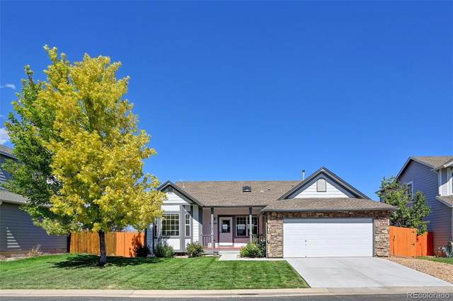 12261 W Chenango Drive, Morrison, CO 80465 (MLS #4779108) :: Clare Day with Keller Williams Advantage Realty LLC