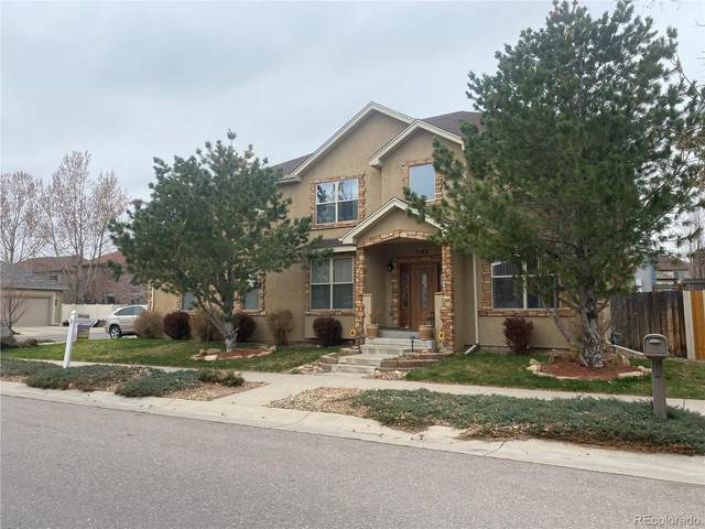 1163 S Ammons Street, Lakewood, CO 80232 (#4779271) :: My Home Team