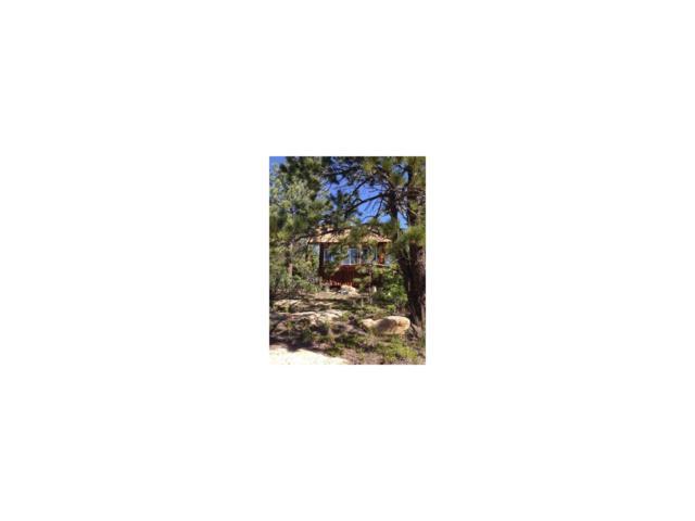 16260 Rattlesnake Road, Weston, CO 81091 (#4779779) :: Wisdom Real Estate