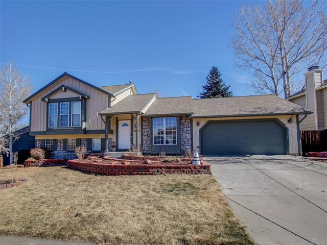 5984 S Netherland Circle, Centennial, CO 80015 (#4779956) :: The Peak Properties Group