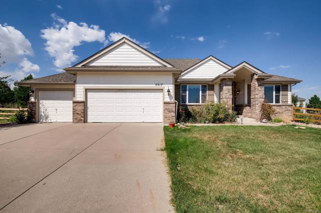 5317 Duchesne Court, Castle Rock, CO 80104 (#4780991) :: Wisdom Real Estate
