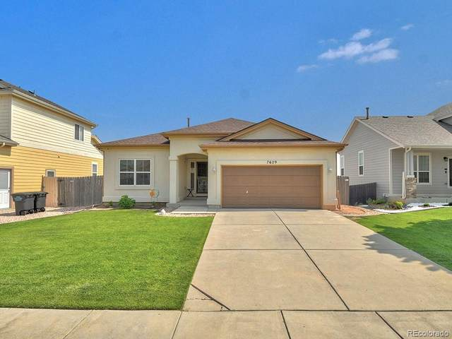 7629 Duck Hawk Place, Fountain, CO 80817 (#4784852) :: The Artisan Group at Keller Williams Premier Realty