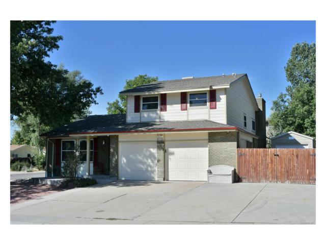 8407 Zephyr Court, Arvada, CO 80005 (MLS #4785241) :: 8z Real Estate