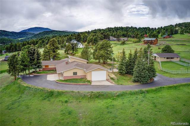 22256 Meadow View Road, Morrison, CO 80465 (MLS #4785612) :: The Sam Biller Home Team