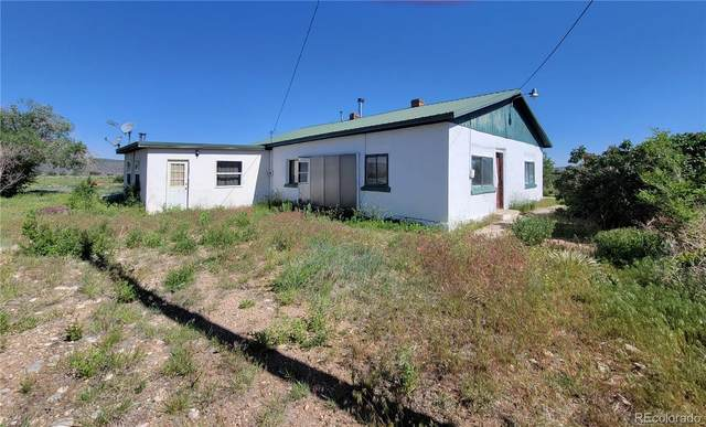 12167 County Road 21, San Luis, CO 81152 (#4788919) :: The HomeSmiths Team - Keller Williams
