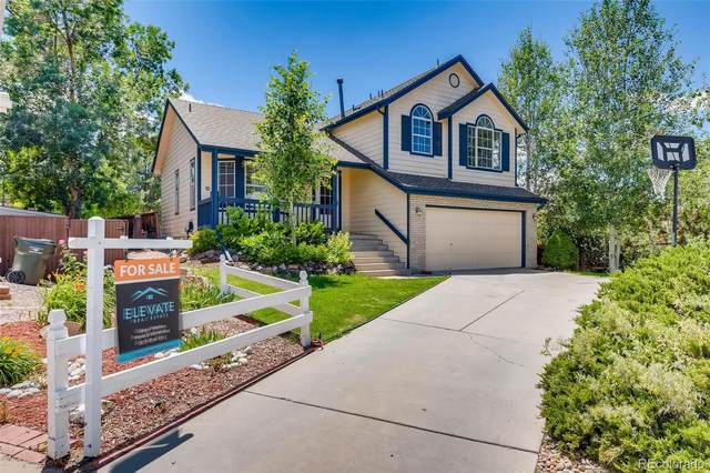 965 Cobblestone Drive, Highlands Ranch, CO 80126 (#4789631) :: The Gilbert Group