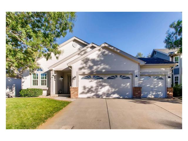 1163 English Sparrow Trail, Highlands Ranch, CO 80129 (#4789771) :: Colorado Team Real Estate