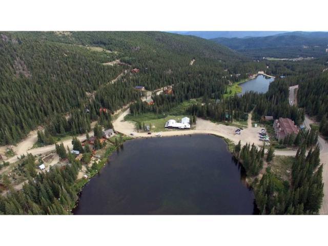 Tract E, Idaho Springs, CO 80452 (MLS #4790132) :: 8z Real Estate