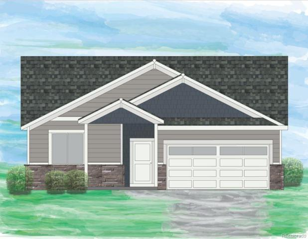 1110 103rd Avenue, Greeley, CO 80634 (#4792062) :: The City and Mountains Group