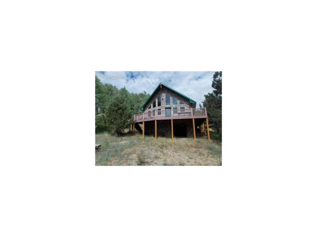 23000 County Road 67, Victor, CO 80816 (MLS #4792616) :: 8z Real Estate