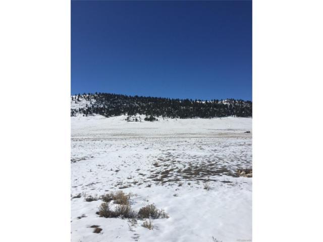 1595 Sulphur Mountain Road, Lake George, CO 80827 (MLS #4793876) :: 8z Real Estate