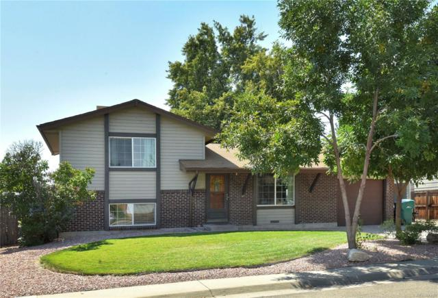 1300 Solana Drive, Denver, CO 80229 (#4794888) :: The Peak Properties Group
