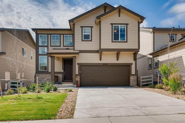 2530 Garganey Drive, Castle Rock, CO 80104 (#4795702) :: Own-Sweethome Team