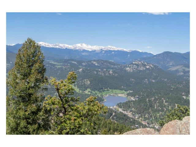 25901 Independence Trail, Evergreen, CO 80439 (MLS #4795883) :: 8z Real Estate