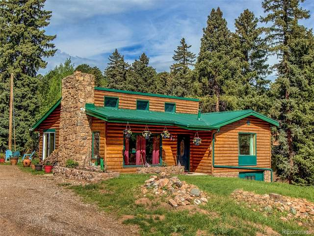 28233 Meadow Trail, Conifer, CO 80433 (#4796376) :: HomeSmart Realty Group