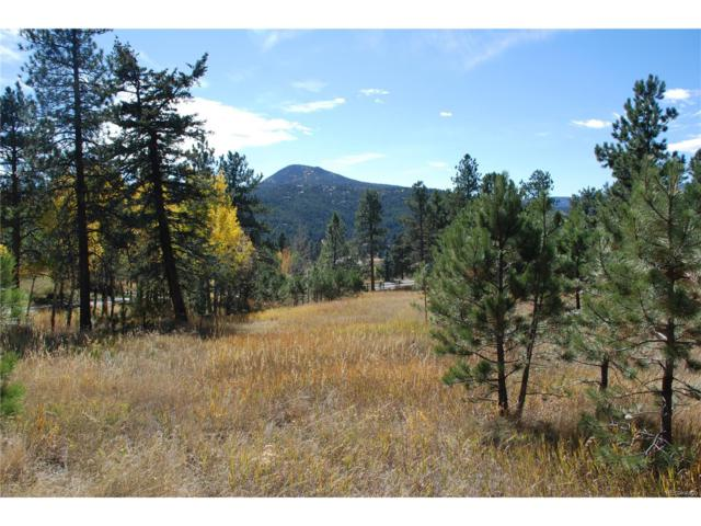 7037 Timbers Drive, Evergreen, CO 80439 (#4796441) :: The Pete Cook Home Group