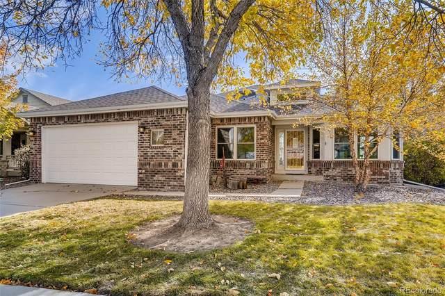6736 Salvia Court, Arvada, CO 80007 (MLS #4799740) :: 8z Real Estate