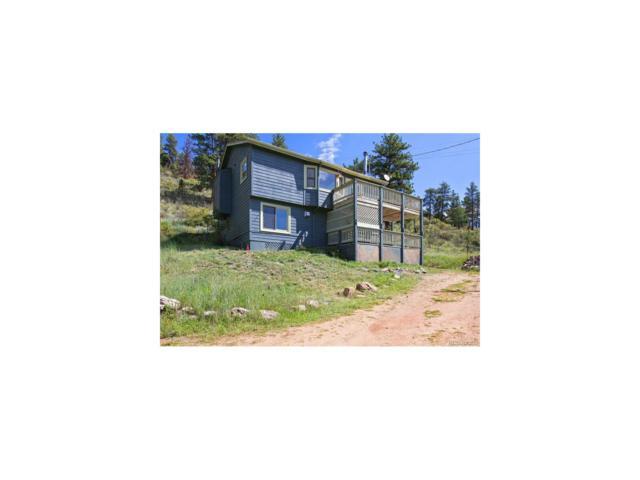 15 Andrist Lane, Bailey, CO 80421 (MLS #4800548) :: 8z Real Estate
