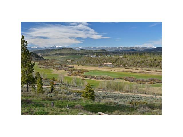 367 County Road 452, Grand Lake, CO 80447 (MLS #4800631) :: 8z Real Estate