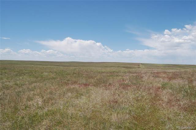 41991 Comanche Creek Road, Kiowa, CO 80117 (MLS #4801633) :: 8z Real Estate