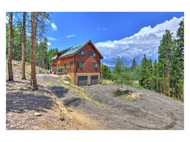 785 Warren Gulch Road, Idaho Springs, CO 80452 (MLS #4803118) :: 8z Real Estate
