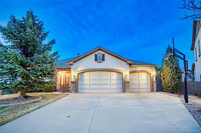 9593 Newport Plum, Colorado Springs, CO 80920 (MLS #4803434) :: 8z Real Estate