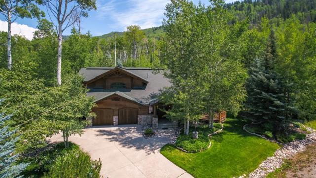 3290 Aspen Wood Lane, Steamboat Springs, CO 80487 (#4803712) :: Bring Home Denver