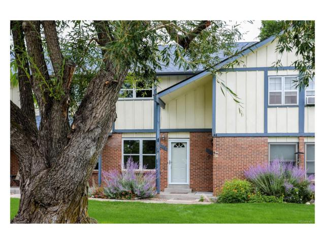 7027 S Webster Street, Littleton, CO 80128 (MLS #4805861) :: 8z Real Estate