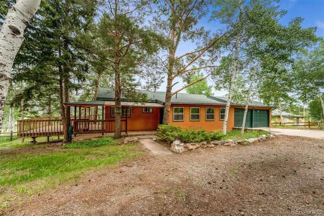 25807 Snyder Avenue, Conifer, CO 80433 (#4809451) :: Finch & Gable Real Estate Co.