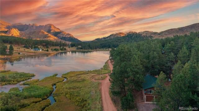 15154 Pine Lake Drive, Woodland Park, CO 80863 (#4809651) :: Symbio Denver