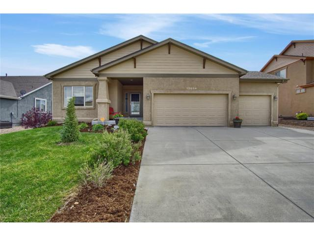 12604 Angelina Drive, Peyton, CO 80831 (MLS #4816111) :: 8z Real Estate