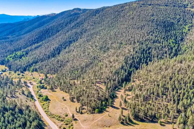 12479 S Foxton Road, Conifer, CO 80433 (#4816342) :: Venterra Real Estate LLC