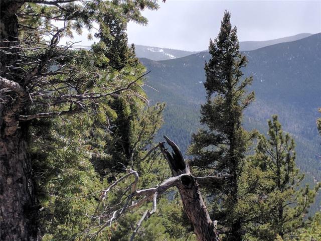 Wild Wagoner Trail, Dumont, CO 80436 (MLS #4817803) :: 8z Real Estate