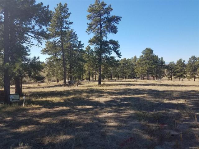 10560 Shadow Pines Road, Parker, CO 80138 (#4819753) :: Bring Home Denver