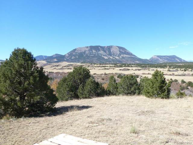 Lot 79 Colorado Land & Grazing Ranch, Walsenburg, CO 81089 (#4823107) :: The DeGrood Team