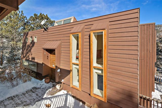 96 Montane Drive, Idaho Springs, CO 80452 (#4832580) :: Bring Home Denver
