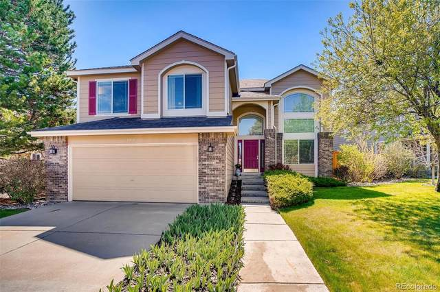 8980 Goosander Way, Littleton, CO 80126 (#4835750) :: Colorado Home Finder Realty
