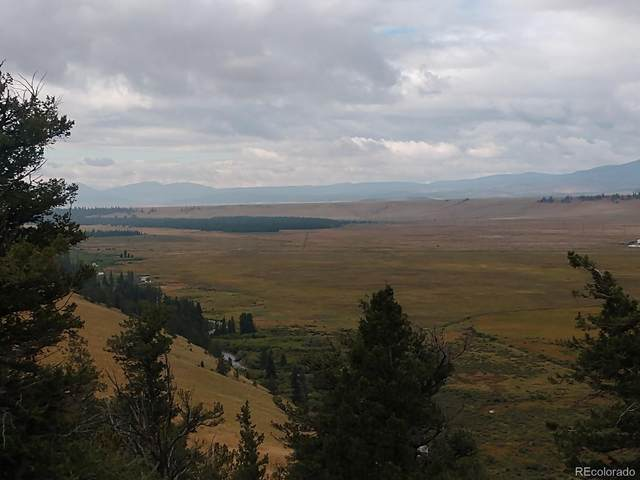 Middle Fork Vista, Fairplay, CO 80440 (MLS #4836121) :: Find Colorado