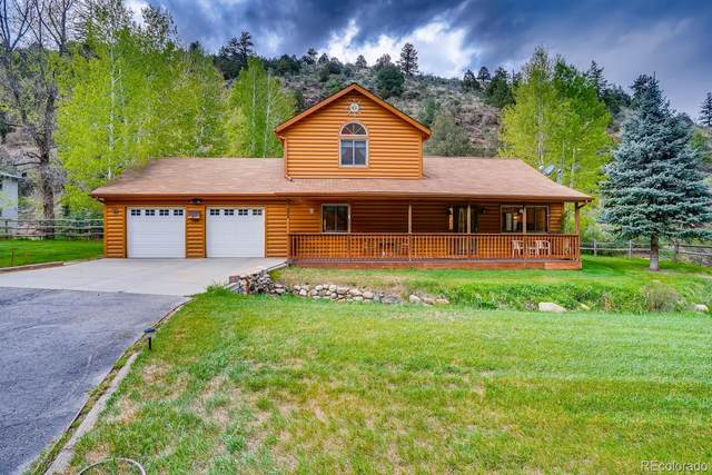 873 Soda Creek Road, Idaho Springs, CO 80452 (#4837395) :: Arnie Stein Team | RE/MAX Masters Millennium